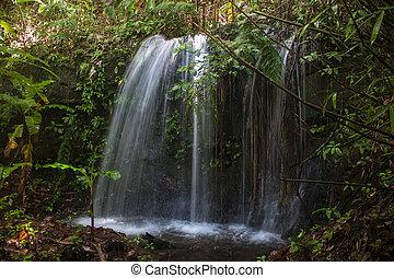malý, vodopád, laos
