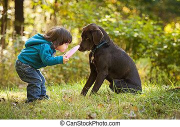 Mladý kluk si hraje s pejskem