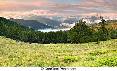 mlhavý, léto, západ slunce, hory