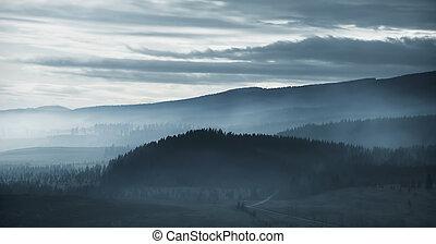mlhavý, rozednívat se, dramatický, les, hora