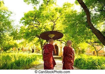 mnisi, buddhista