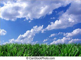 Modrá obloha zelená tráva