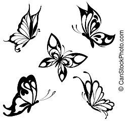 motýl, dát, čerň, neposkvrněný, díky