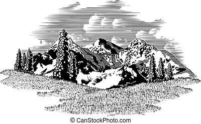 Mountain los