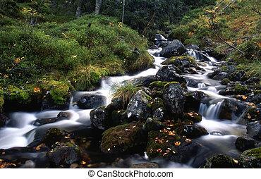Mountainstream