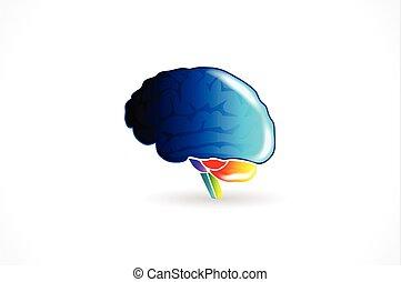 mozek, emblém, vektor