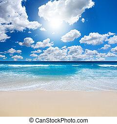Nádherná plážová krajina