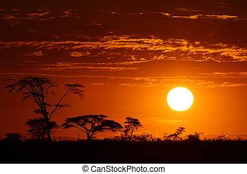Nádherné africké západ slunce