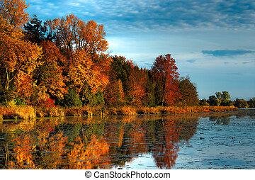 Na podzimní les na pobřeží