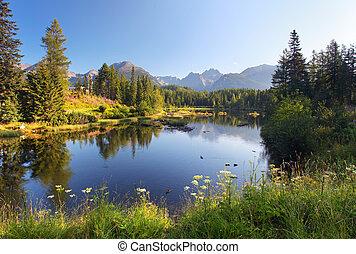 Narodní horská scéna s krásným jezerem v Slokia Tatra - strbs plao