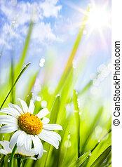 Naturální letní pozadí s květinami v trávě