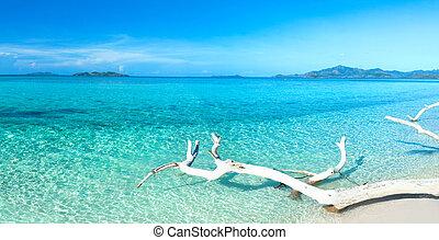 obrazný, panoráma, pláž