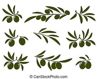 Olivová větev