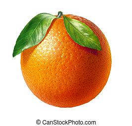 Oranžové ovoce se dvěma listy, na bílém pozadí.