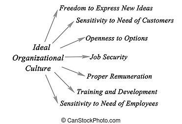 organizational, kultura, ideál