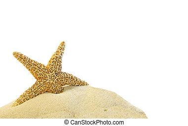 písčina, hvězdice, kopec, svobodný