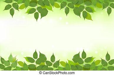 Příroda s zelenými listy