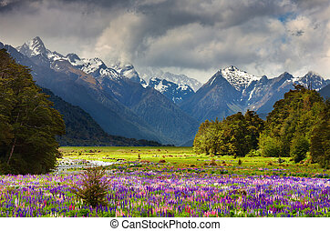 překrásný, údolí