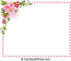 překrásný, grafické pozadí, orchidea