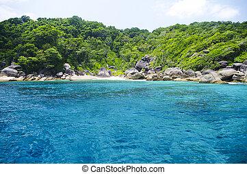 překrásný, konzervativní, thajsko, asie, similan, moře, jih