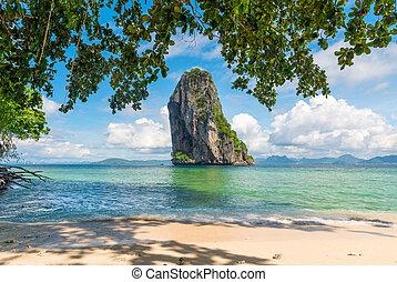 překrásný, ostrov, fotografie, strom, poda, zastínit, thajsko, útes