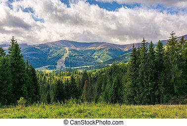 překrásný, ukrýt v lese, vyvýšenina, krajina