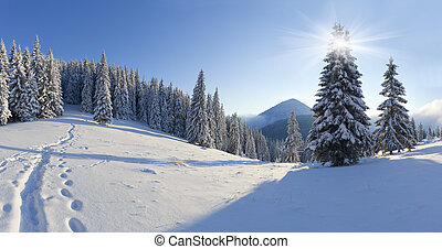 Panorama z zimního rána v horách