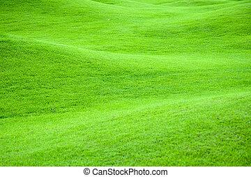 pastviny, 2, nezkušený