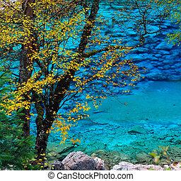 podzim, barvitý