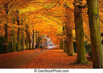 podzim, barvy