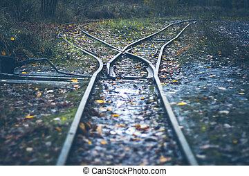podzim, -, dráha, omezený, les, spílat, odhadnout, turnout