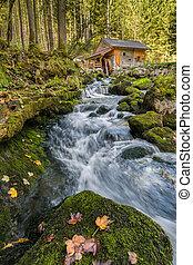 podzim, malý, vodopád, krajina