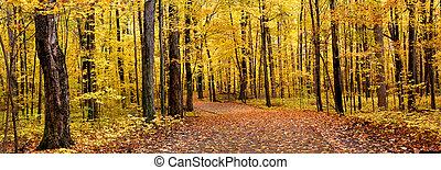 podzim, panoráma
