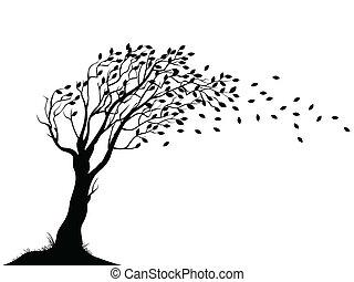 podzim, strom, silueta