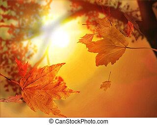 podzimní list podzimní list