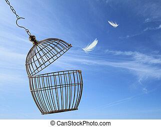 Pojem o svobodě. Utéct z klece