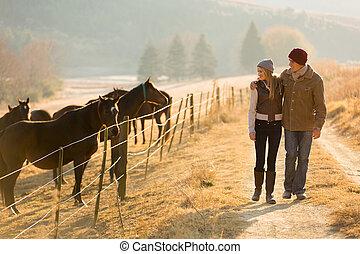 pojit walking, mládě, kůň, farma