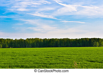 Porodní krajina a obloha