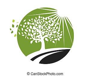 pralátka, vektor, strom, logos, druh, ikona, list