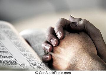 prosit dílo, bible