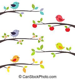 Ptáci na větvích