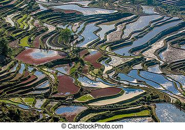 Rýžové terasy yuanyangu, Yunnan, porcelán