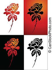 růže, vektor, ilustrace