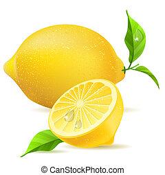 Realistický citron a půl listí