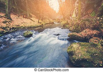 River in lesní krajina, podzimní příroda