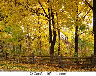 scenérie, podzim