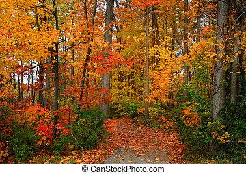 Scenický podzim