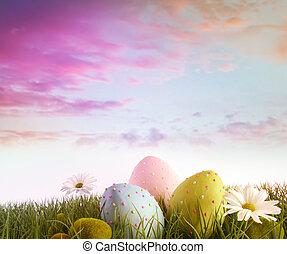 sedmikráska, vejce, duha, nebe, barva, pastvina