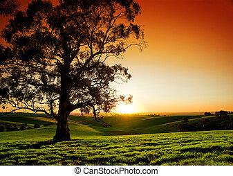 selský, západ slunce