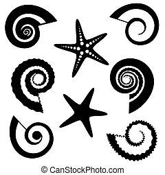 silhouettes, dát, hvězdice, lastury